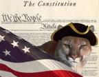 constitutionpumasmall