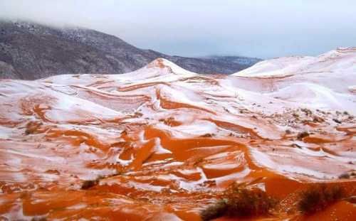 snow-in-sahara