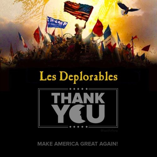 lesdeplorables3