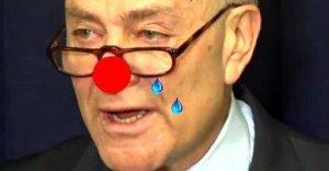 clown-schumer
